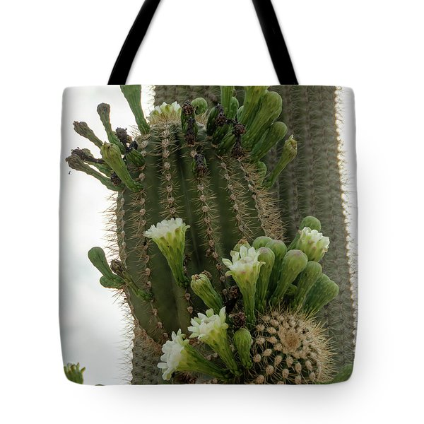 Saguaro Buds And Blooms Tote Bag