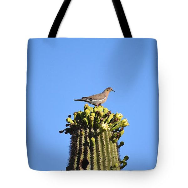 Saguaro Dove 1 Tote Bag