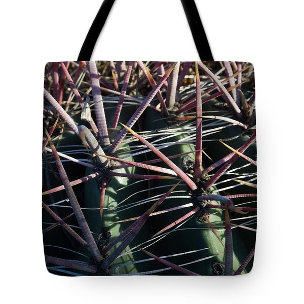 Tote Bag featuring the photograph Saguaro Grid by Carolina Liechtenstein