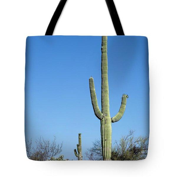 Saguaro National Park Arizona Tote Bag