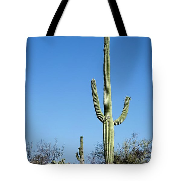 Tote Bag featuring the photograph Saguaro National Park Arizona by Steven Frame