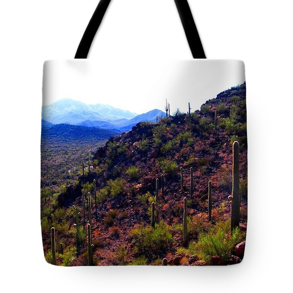 Saguaro National Park Winter 2010 Tote Bag