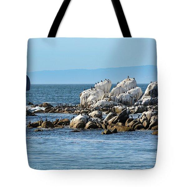Sailboat At Bird Rock Tote Bag