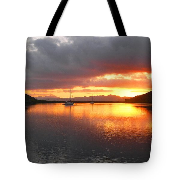 Sailboats At Sunrise In Puerto Escondido Tote Bag by Anne Mott