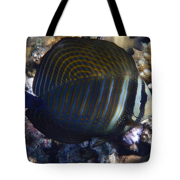 Sailfin Tang  Tote Bag