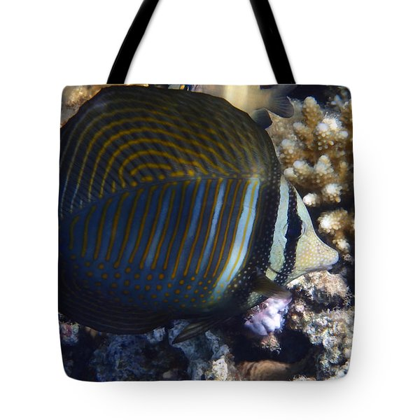 Sailfin Tang  Tote Bag