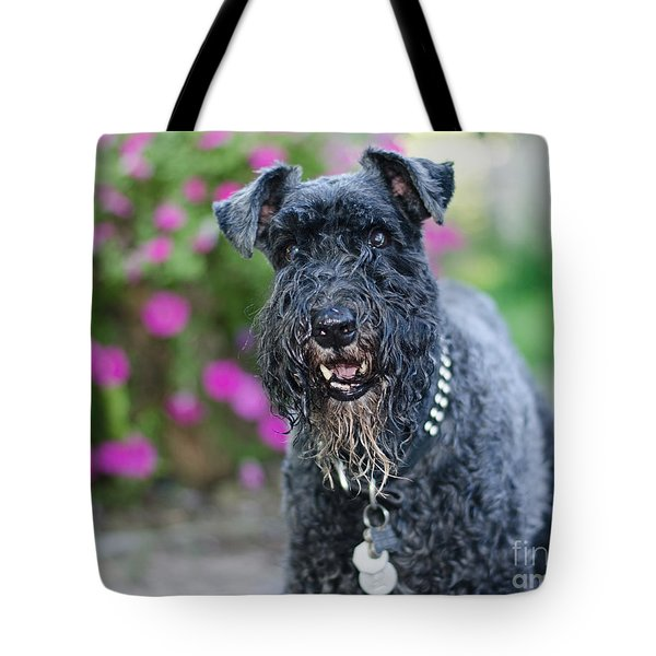 Tote Bag featuring the photograph Sailor by Irina ArchAngelSkaya