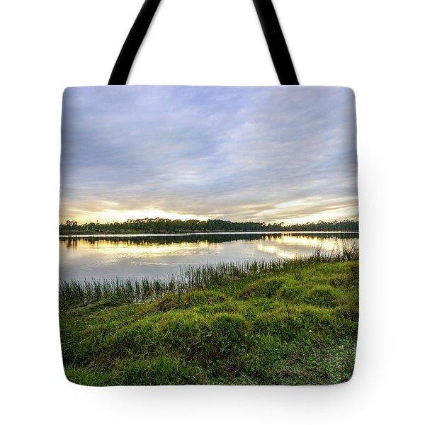 Saint Lucie Nature  Tote Bag