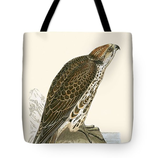 Saker Falcon Tote Bag by English School