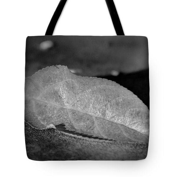 Saleaf And Sandstone Tote Bag