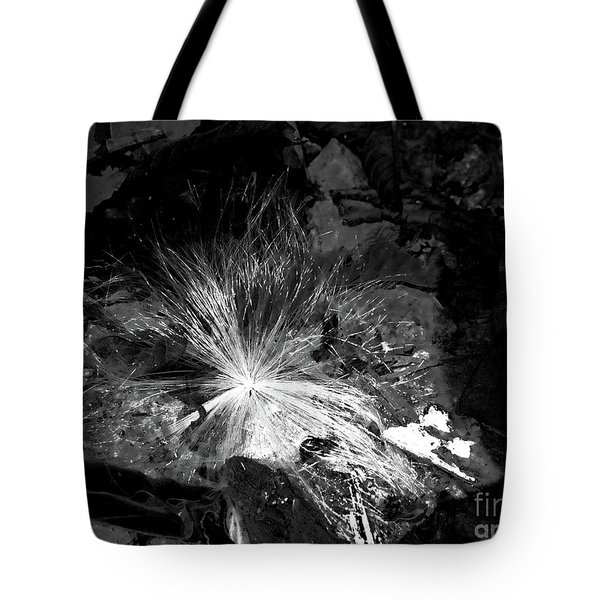 Salix Seed Tote Bag