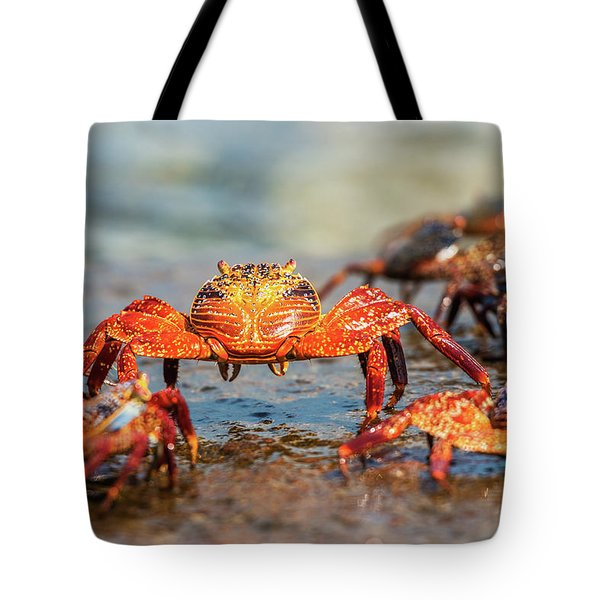 Sally Lightfoot Crab On Galapagos Islands Tote Bag
