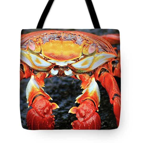 Sally Lightfoot Crab Tote Bag by Sue Cullumber