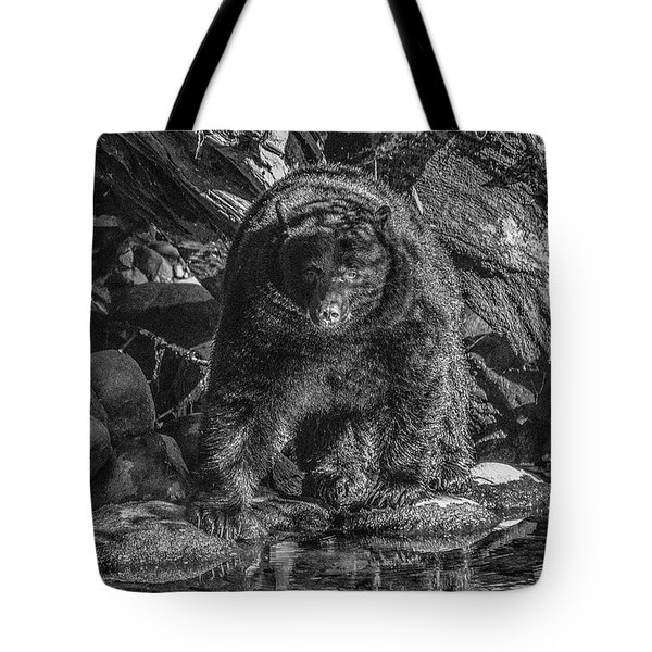 Salmon Seeker Black Bear  Tote Bag