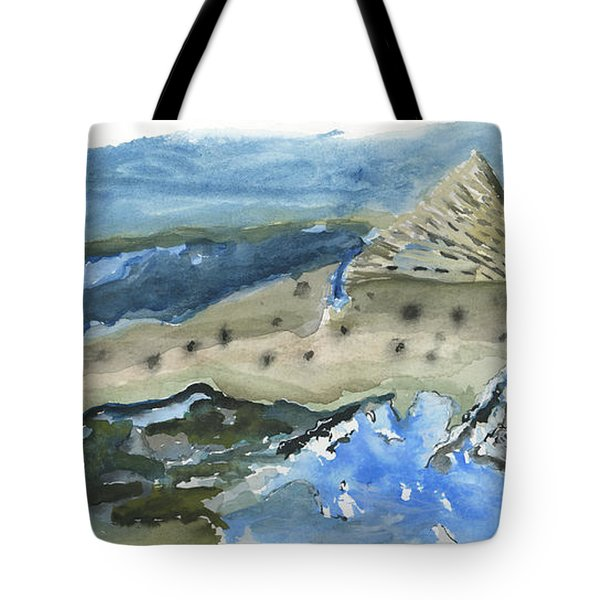 Salmon Surface Tote Bag