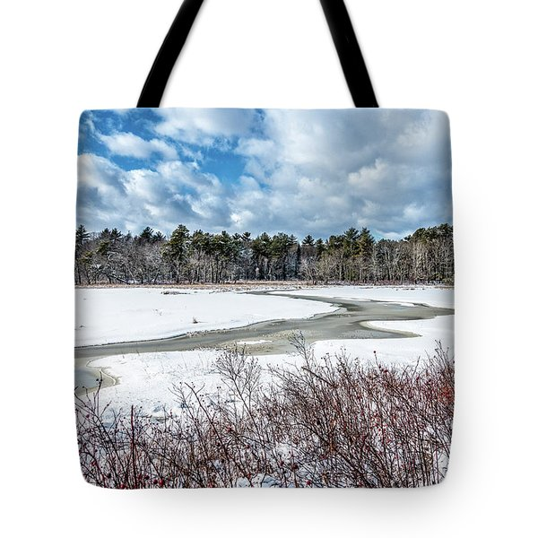 Salt Marsh Meander Tote Bag