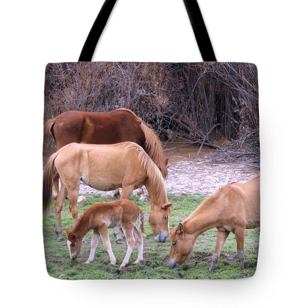 Salt River Wild Horses In Winter Tote Bag