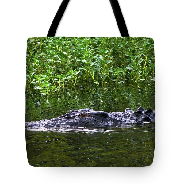 Saltwater Crocodile In Kakadu Tote Bag