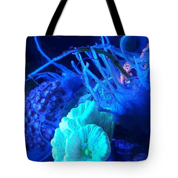 Saltwater Sponge Tote Bag