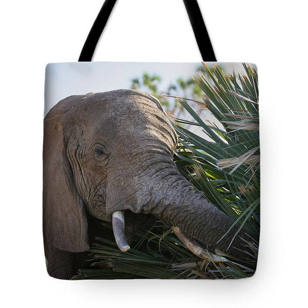 Samburu Elephant Tote Bag by Gary Hall