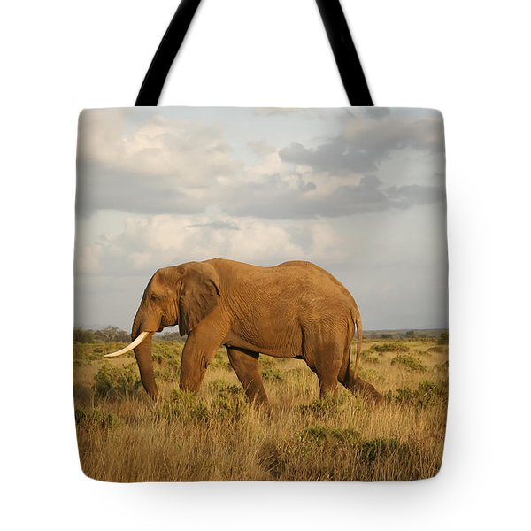 Samburu Giant Tote Bag by Gary Hall