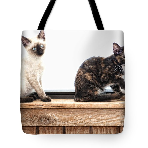 Sammi And Micki Tote Bag by Karen Slagle