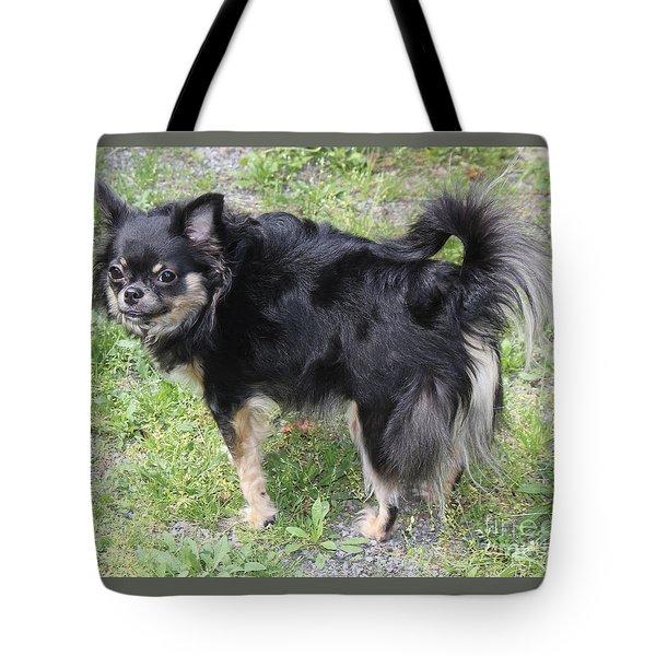 Sammie Jo 2 Tote Bag