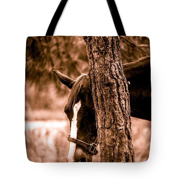 Tote Bag featuring the photograph Samson In Sepia by Randy Sylvia