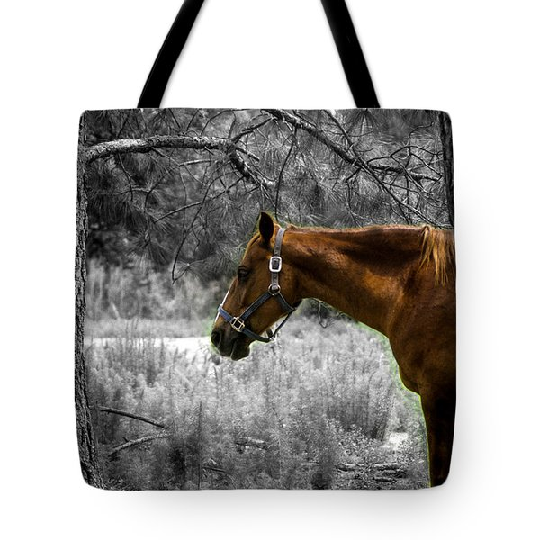 Tote Bag featuring the photograph Samson by Randy Sylvia