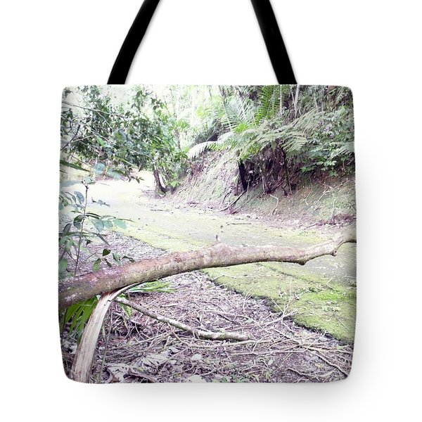 San Andres Echologycal Path At Guilarte's Forest Tote Bag