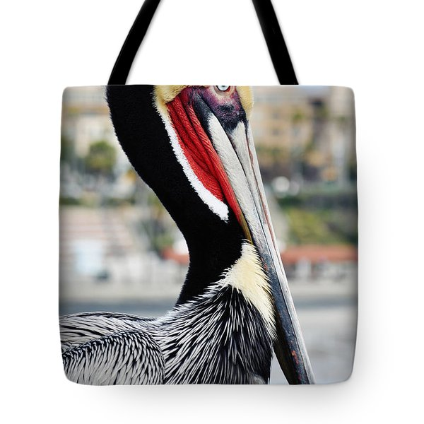 Tote Bag featuring the photograph San Diego Pelican by Kyle Hanson
