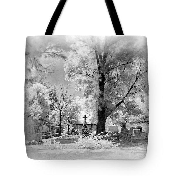 Tote Bag featuring the photograph San Jose De Dios Cemetery by Sean Foster