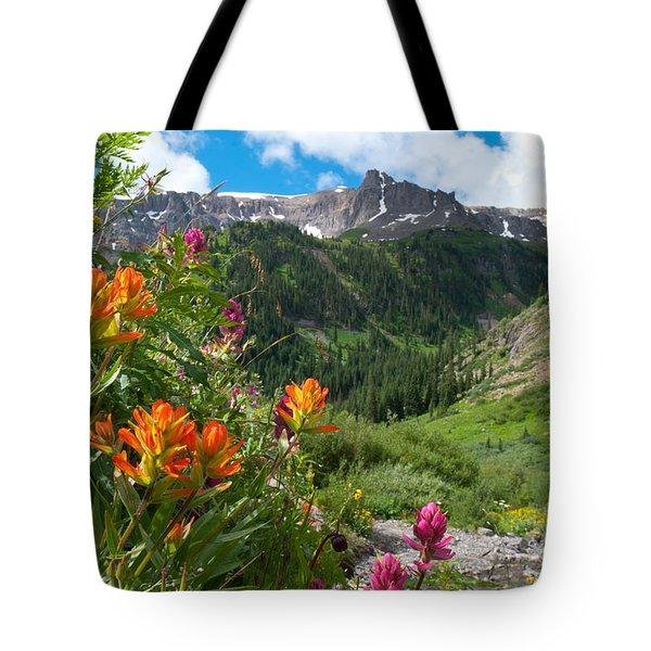 San Juans Indian Paintbrush Landscape Tote Bag