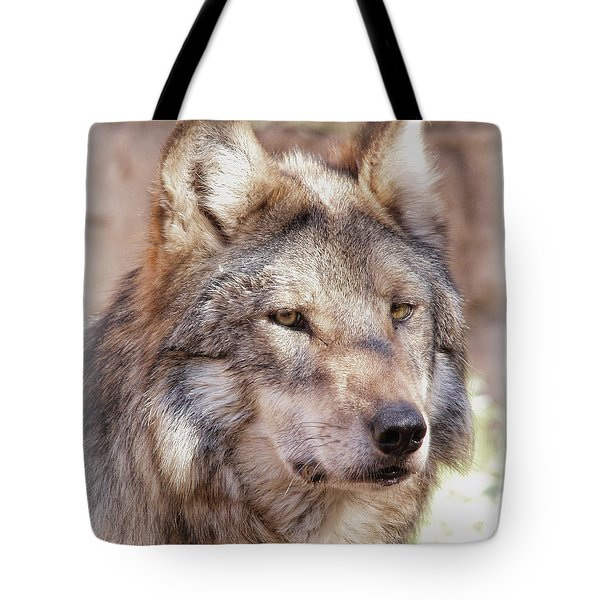 Sancho Tote Bag