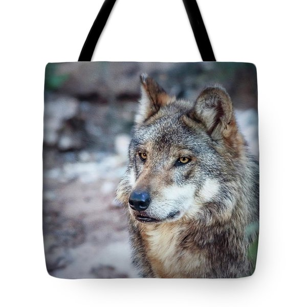 Sancho Searching The Area Tote Bag