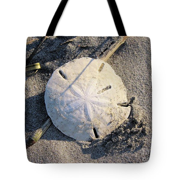 Sand Dollar Tote Bag by Katie Monzel