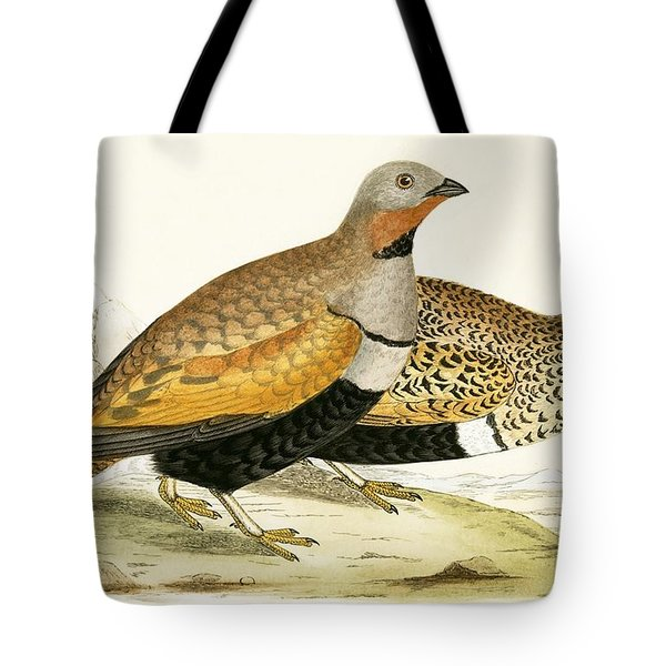 Sand Grouse Tote Bag by English School