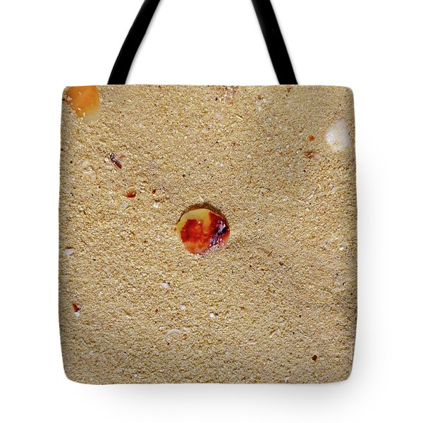Tote Bag featuring the photograph Sand Shell Art by Francesca Mackenney