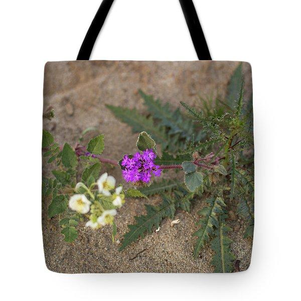 Sand Verbena Sunset Tote Bag