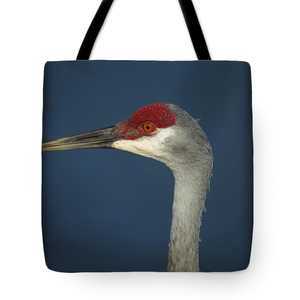 Sandhill Blues Tote Bag
