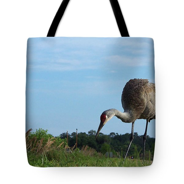 Sandhill Crane 018 Tote Bag by Chris Mercer