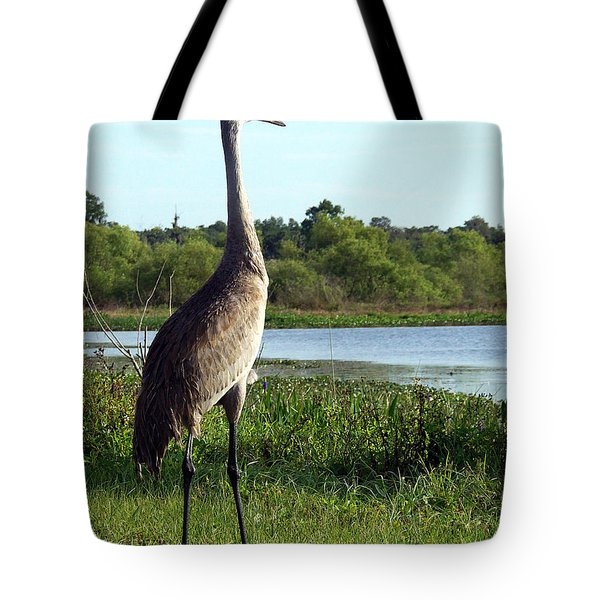 Sandhill Crane 019 Tote Bag by Chris Mercer