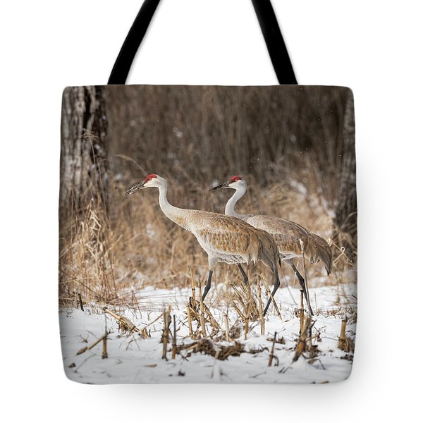 Sandhill Crane 2016-4 Tote Bag by Thomas Young