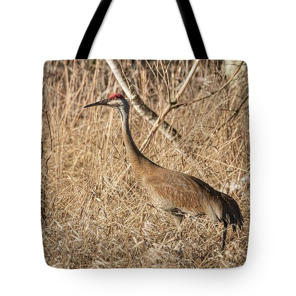 Tote Bag featuring the photograph Sandhill Crane 2016-7 by Thomas Young