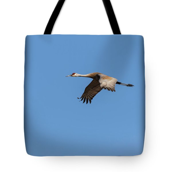 Tote Bag featuring the photograph Sandhill Crane 2017-1 by Thomas Young