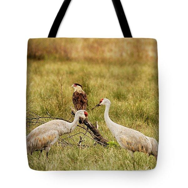 Sandhill Crane And Caracara Tote Bag
