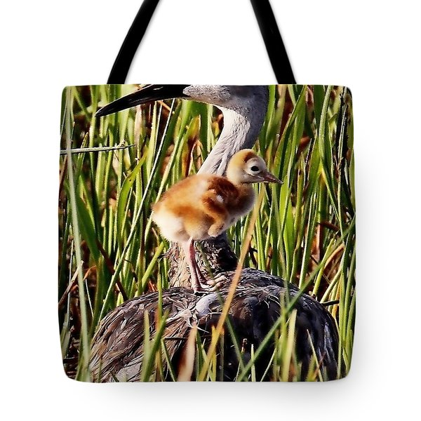 Sandhill Crane And Colt Tote Bag