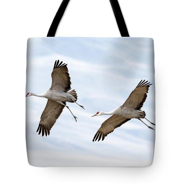 Sandhill Crane Approach Tote Bag by Mike Dawson