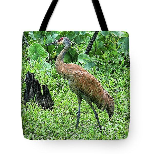 Sandhill Crane At Sandy Ridge Reservation Tote Bag