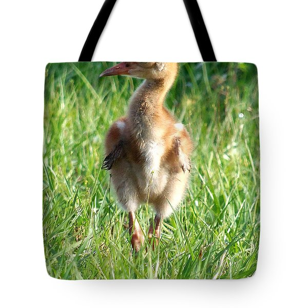Sandhill Crane Chick 085  Tote Bag by Chris Mercer